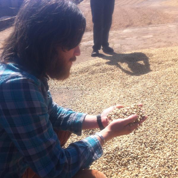 coffee, green coffee, beard, bearded man, coffee growing, origin trip