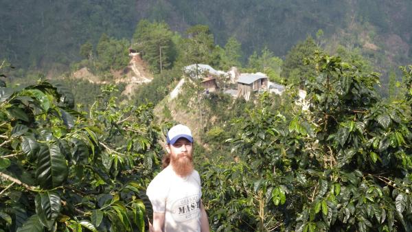 coffee farm, bearded man, beards, coffee, california coffee, sacramento coffee
